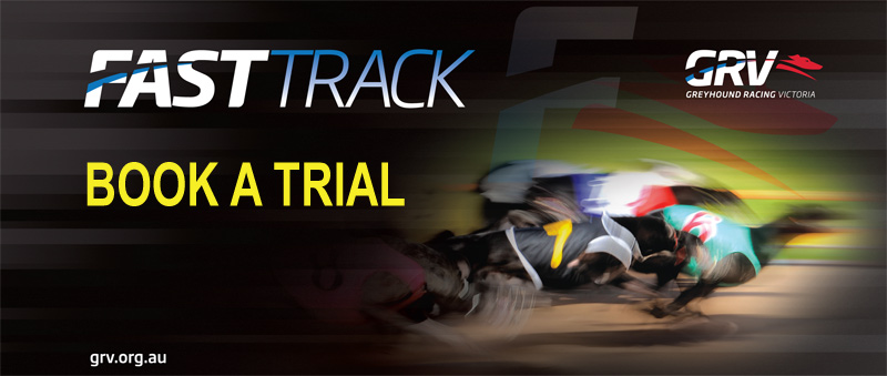 NEW-BOOK-A-TRIAL