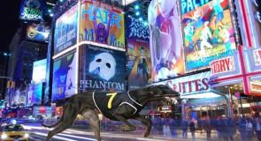Bright Lights of Broadway