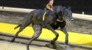 Sandown Preview: No More Toying Around!