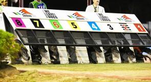 Sandown Park Preview: Melbourne Cup Kicks into Gear