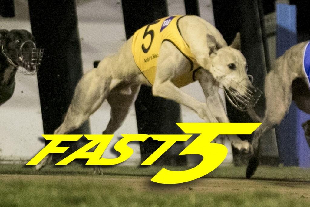 Fast5 170413