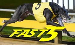 Fast5 – Thursday 20 April