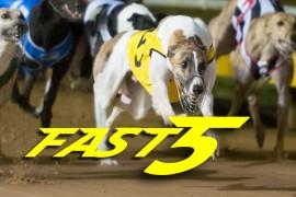 Fast5 – RSN Sandown Cup heats night!