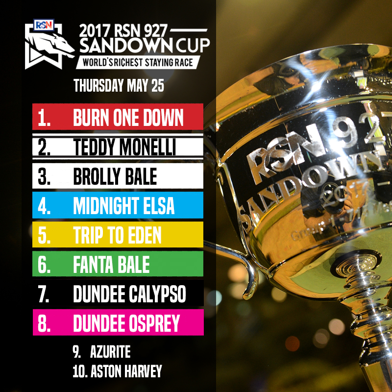 SANDOWN CUP BOX DRAW 2017 FINAL