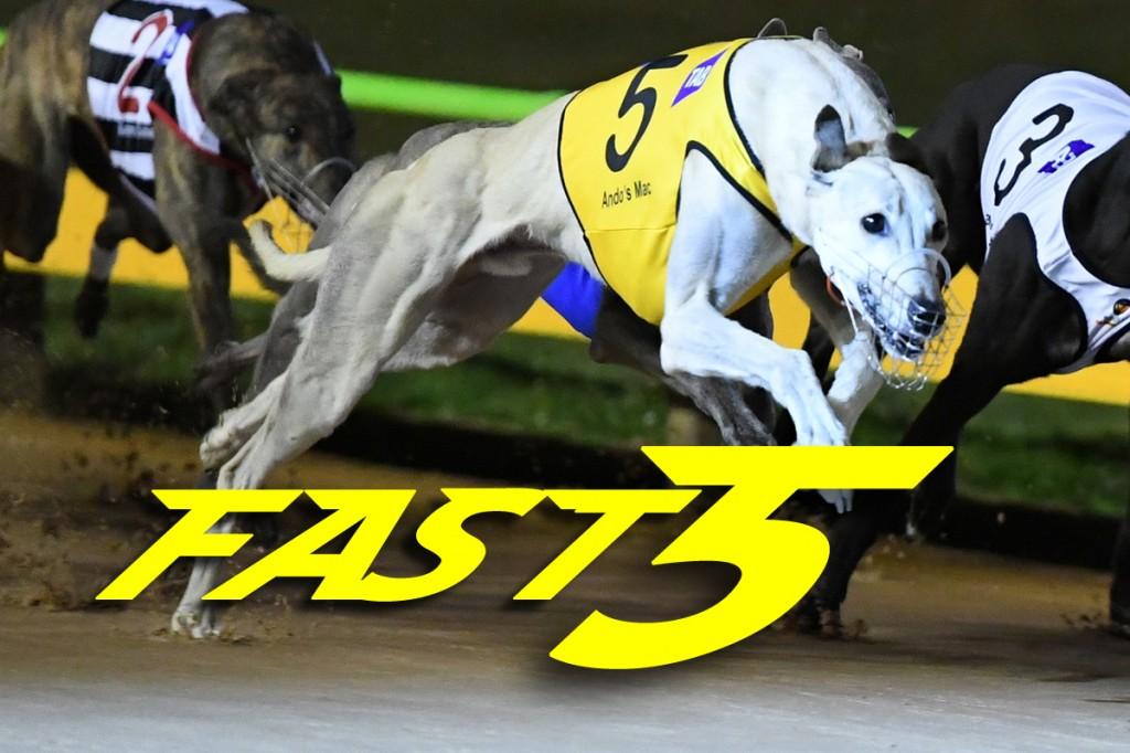 Fast5 170323
