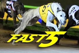 Fast5 – 15 June 2017