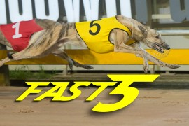 Fast5 – 22 June 2017