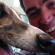 Same dogs, new tricks: How greyhound racing blew my mind