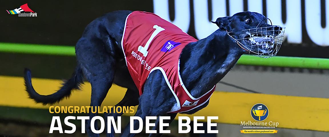 Congrats-AstonDeeBee-Cup