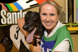 Cup favourite brilliant in heat victory