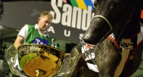 Armchair guide to the world's richest greyhound race