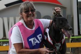 Houlahan's first Sandown win in Judy Hayley heats