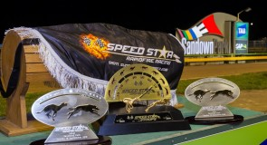 Speed Star VII – Event guide
