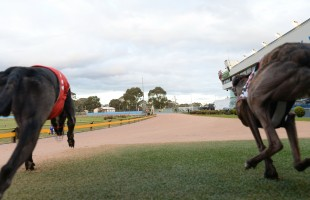 Punters clean up on Speed Star VII