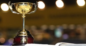 Sandown Dogcast | Cup week!