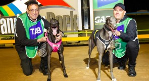 Dead heat means mates hold side bet