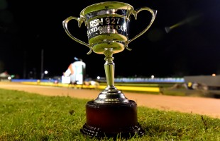 RSN Sandown Cup night armchair guide