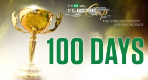 100 Melbourne Cup facts