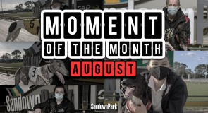 Moment of the Month – August